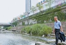 고정일 동서문화사 대표가 서울 청계6가 오간수교 부근에 놓인 징검다리를 건너고 있다. 그는 이곳을 70년 현대사의 상징적 공간으로 꼽았다. 현대화된 평화시장과 오간수교가 보인다. 김춘식 기자