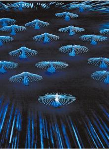 2014 소치 동계올림픽 개막식에서 공연된 차이콥스키의 '백조의 호수'. [AP]