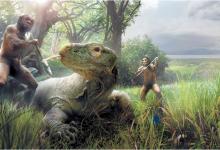5만 년 전에 멸종한 플로레스인과 지금도 살고 있는 코모도왕도마뱀. 플로레스인은 코모도왕도마뱀을 잡아먹기도 했고 때로는 잡아먹히기도 했을 것이다. 플로레스인의 키는 불과 1m도 되지 않았으며 코모도왕도마뱀은 길이 3m까지 자란다. 둘 다 섬에서만 살았다.